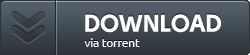 Netrunner 4.0 ISO - Torrent